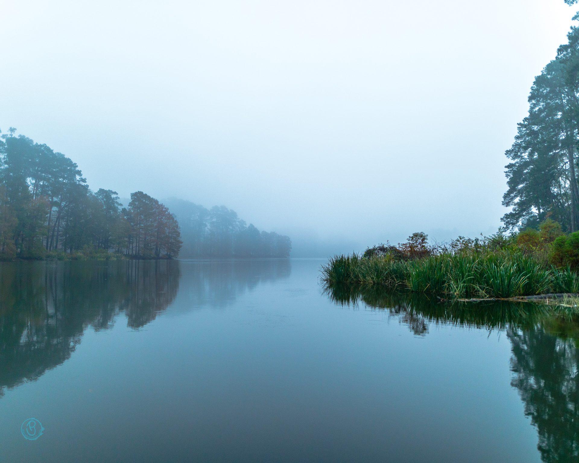 Misty morning on lake